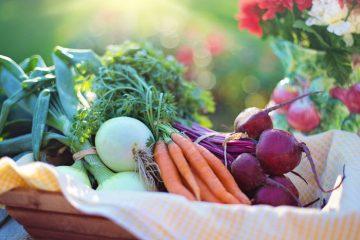 Храни предпазващи от подагрозна криза – Подагра | Причини, симптоми и лечение