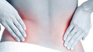 Роля на бъбрека във възникване и развитие на болестта подагра – Подагра | Причини, симптоми и лечение