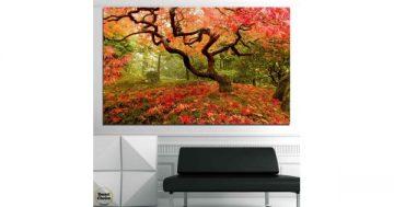 Картина пано за стена от 1 част – Японската градина в Портланд САЩ – HD-765-1 – Smart Choice