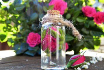 10 ползи и 10 приложения на розовата вода