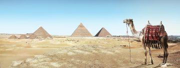 Пирамиди ли са P2P платформите? Как и от какво печелят?