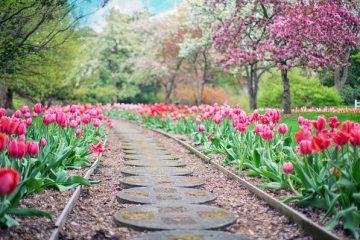 5 чудесни европейски дестинации, които да посетим тази пролет – Blob.bg