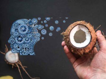 Кокосовото масло и неговото влияние върху невро-дегенеративните изменения на мозъка