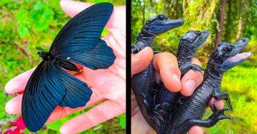 20 фантастични творения на природата, които наистина съществуват