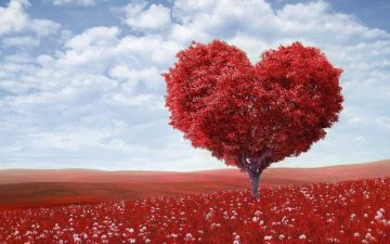 15 идеи за подарък в Деня на влюбените – Свети Валентин | Spiritell