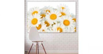 Картина пано за стена от 1 част – Букет бели маргаритки – HD-928-1 – Smart Choice