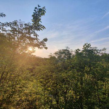 Кратка разходка на Витоша: Княжево – Бялата вода – Тихия кът –