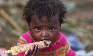 Хиляди в САЩ са изправени пред нова криза – глад | BPost