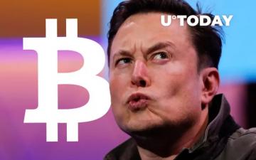 Илон Мъск признава, че няма да има нищо против да му се плаща в Биткойн – Cryptalaxy