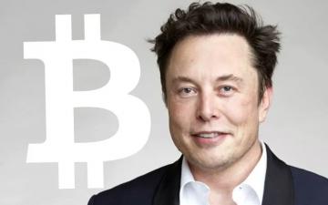 """Илон Мъск за купените от Тесла Биткойни: """"Само глупак не би погледнал другаде"""" – Cryptalaxy"""