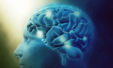 Невромаркетинг – какво представлява и кои са методите, които използва за анализ на потребителското поведение – Magdalena Bonev
