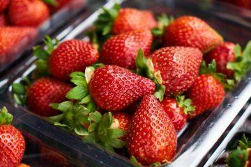 7 ползи от ягодите   Sutrin.com